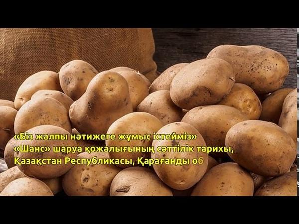 Журнал жаңалықтарының дайджесті картоп жүйесі № 30 шығарылым