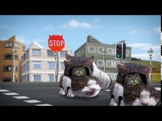 cyriak - Welcome to Kitty City [1hour][infinite loop]