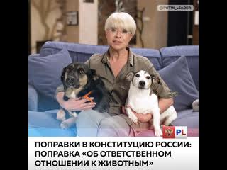 Поправки в Конституцию России: поправка Об ответственном отношении к животным