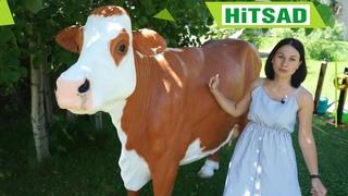 Садовые фигуры ХИТСАД * корова из стеклопластика * интернет магазин HiTSAD