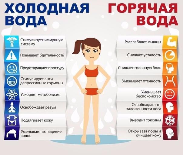 Все Советы По Похудению.