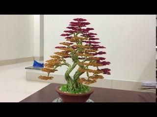 Cách làm cây bonsai dây đồng | làm cây bonsai handmade dáng thế phu thê | Bonsai handmade ha noi.