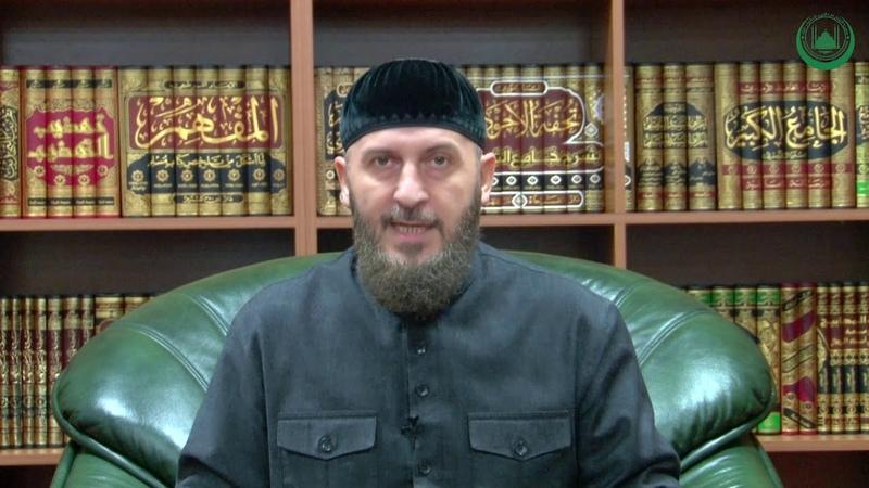 Хабзиев Арби Динехь накъост лацар
