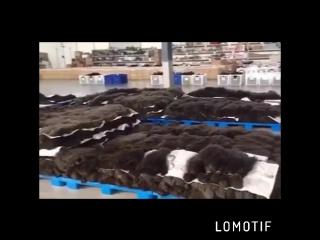Фабрика волос , волосы оптом для наращивания