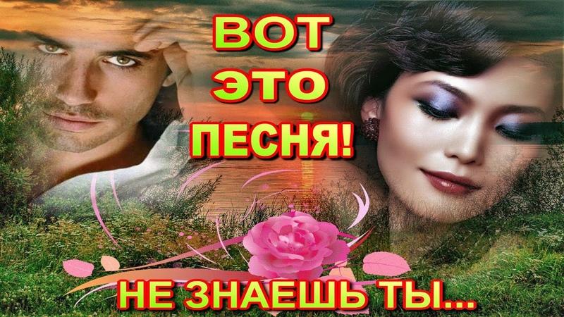Не знаешь ты Андрей Никольский Вот это песня
