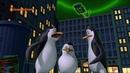 Мультфильм Пингвины из Мадагаскара - 3 сезон 3 серия HD