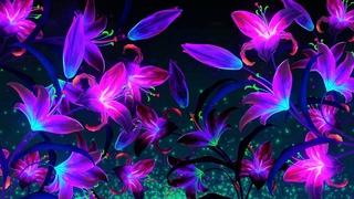Good Night Music | Soft Calming Sleep Music | 528Hz Light Deep Sleeping Music | Calm Healing Music