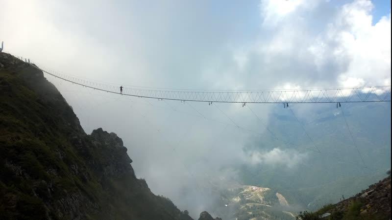 На Роза Пик впервые 2019 год высота 2320 метров над уровнем моря