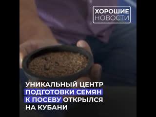 Уникальный центр подготовки семян к посеву открылся на Кубани