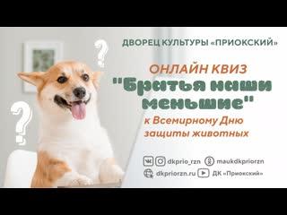 4 октября. Международный день защиты животных