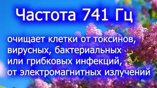 Звукотерапия.741 Гц.От токсинов, вирусных, бактериальных или грибковых инфекций