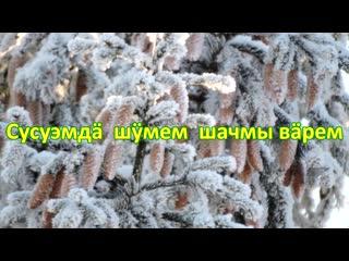 2021-01-15 Усолинская библиотека к 100 летию ГР
