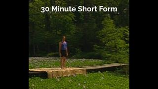 Short Form 30 Min : 1995 (Ashtanga Yoga - David Swenson)