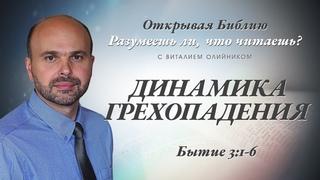 028 Динамика грехопадения. Бытие 3:1-6.