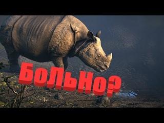 Носороги VS ОДИН СЛОН ✔ [Нарезки по играм]