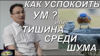 """""""Как успокоить Ум? Или Тишина Среди Шума"""" Сатсанг Челябинск 1 ч."""