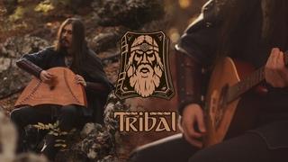 Dryante - The New Beginning - Tribal OST (Original)