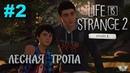Life Is Strange 2 2 Лесная тропа