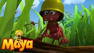 Henry's Cabin - Maya the Bee - Episode 62