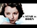 A Star is Born - Liebes-Musikfilm, Drama