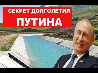 Путин смотрит украинские СМИ вместо КВН