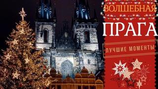 Влог. Волшебная Прага. Елка с историей.