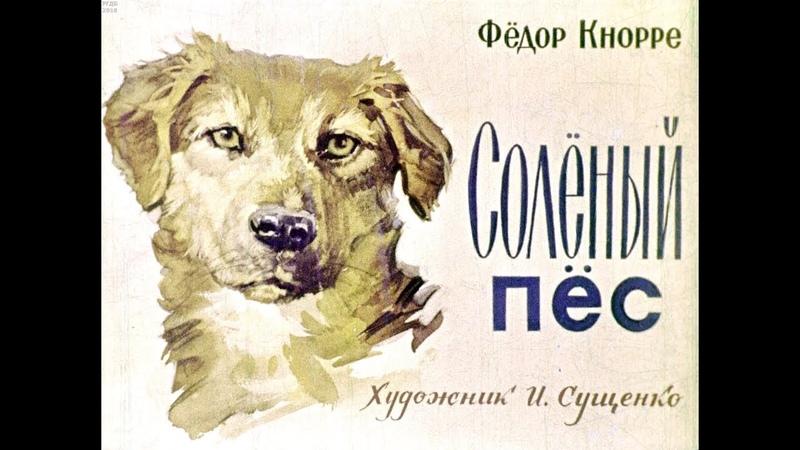 Диафильм Федор Кнорре Солёный пес