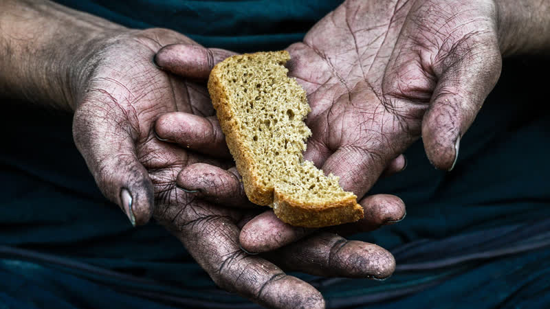 Голод в 2021 году Новости Будущего