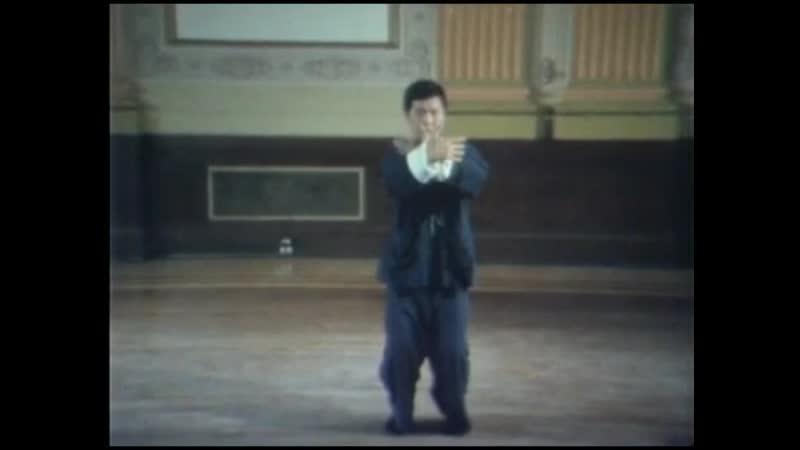 Tai chi chuan Tung Kai Ying