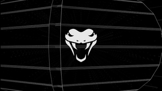 Basilisk Bass — New Years Drum & Bass Mix (2021)