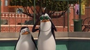 Мультфильм Пингвины из Мадагаскара - 3 сезон 6 серия HD