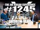 Joe Rogan Experience 1245 - Andrew Yang