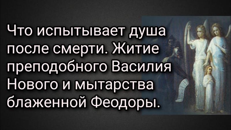 Что испытывает душа после смерти Мытарства блаженной Феодоры Житие преподобного Василия Нового