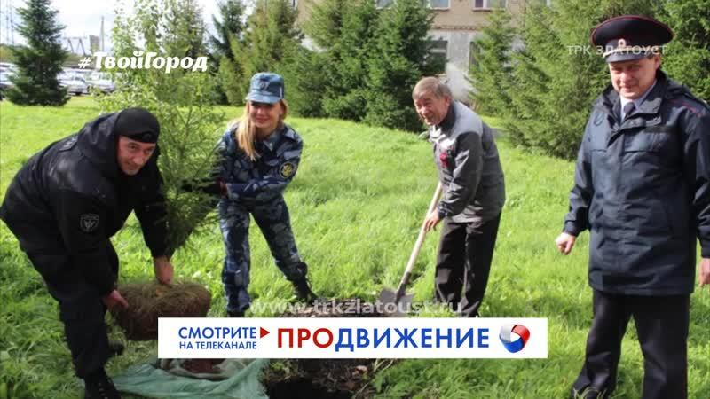 На территории ОМВД посадили Лес Победы