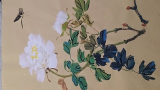 How to paint White Peony Flowers in Chinese watercolour