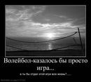 Фотоальбом Данила Стешенко