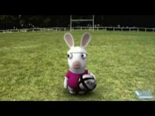 Crazy rabbits soccer