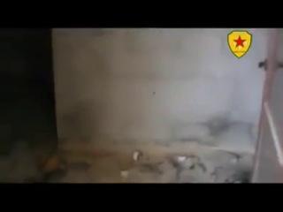 Освобождённый YPG район на северо-востоке Сирии ( мухафаза Хасеке ), осень 2013