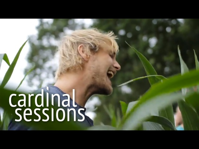 Steaming Satellites How Dare You CARDINAL SESSIONS Appletree Garden Special