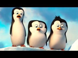 Пингвины Мадагаскара (2014) | Фрагмент