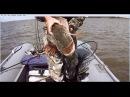 видео новинка 2016 год зимняя и осенняя рыбалкасупер место на щуку и плотвуvideo new