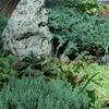 Green History - Идиллия загородной жизни