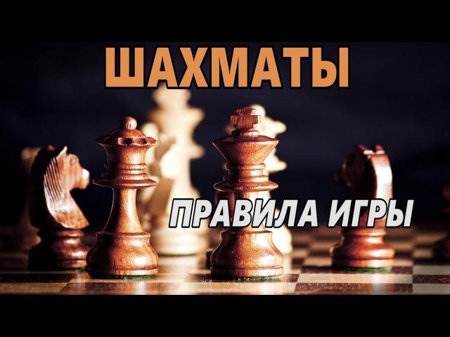 Как играть в Шахматы Правила игры