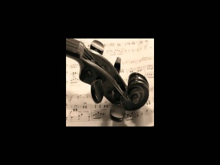 Edward Elgar - Serenade For Strings In E Minor, Op 20