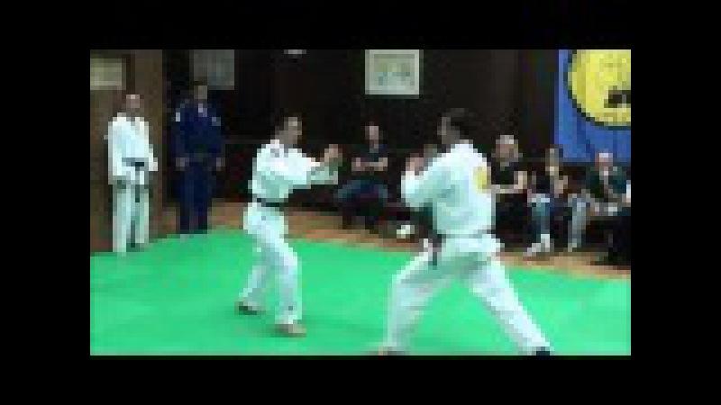 Nikola Lukić- Polaganje za crni pojas prvi Dan, Realni aikido