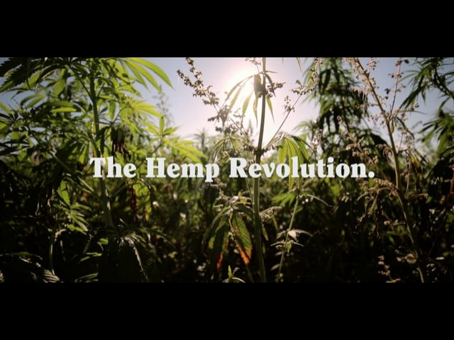 Skuff TV Offcut - Afends Hemp Revolution