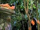 Romeo and Juliet 1968(balcony scene) - IL DIVO(Ti Amero).wmv