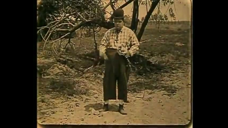 Деревенщина The Hayseed 1919