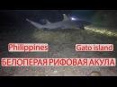 ORANGE GROUP - Philippines, Malapascua, Gato island, Белоперая рифовая акула, requiem sharks
