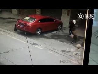 Woman knocked unconscious after dog falls